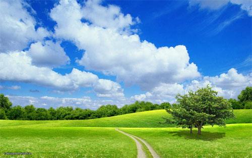 Thiên nhiên đẹp